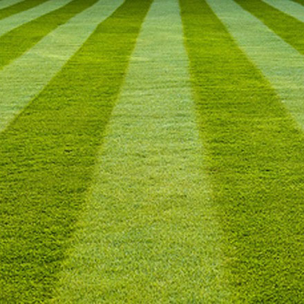 General Maintenance And Landscaping Tips For Central Texas Lawns